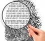 Work in Forensics: 5 Key Steps