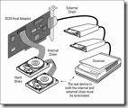 Terminating The SCSI Bus